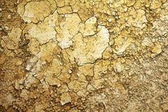 Испытывающая жажду земля Стоковые Изображения RF