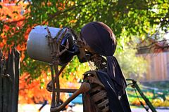 Испытывающий жажду пират стоковое фото rf