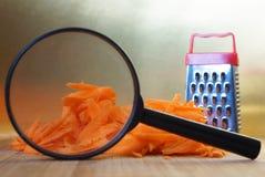 Исследование и анализ качества овощей Поиск для особенностей заскрежетанных морковей используя лупу Генетический стоковая фотография rf