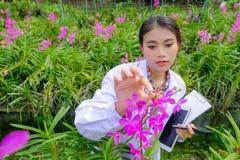 Исследователи орхидеи женщин исследующ и документирующ характеристики орхидей в саде стоковая фотография