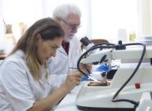 Исследователя здравоохранения работая в лаборатории наук о жизни стоковая фотография