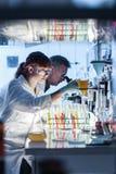 Исследователя здравоохранения работая в научной лаборатории Стоковая Фотография RF