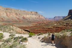 исследовать каньона грандиозный стоковые изображения rf