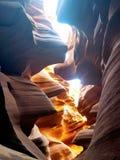 Исследуя каньон Аризона США антилопы стоковые фото