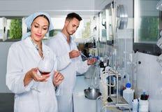 2 исследователя в белом пальто проверяя кислотность вина в лаборатории Стоковая Фотография