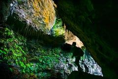 Исследовать пещеру Стоковое Изображение