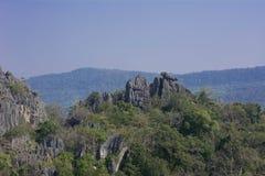 Исследуйте джунгли в Таиланде Стоковая Фотография RF