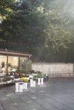 Исследуя Венеция через цветочный магазин тротуара с солнцем flare Стоковые Фотографии RF