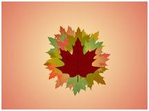 листво Стоковые Фото
