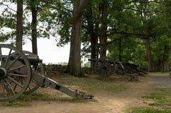 Историческая артиллерия карамболя в деревьях Стоковые Фото