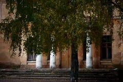Историческая архитектура славян Стоковые Фото