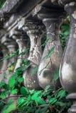 Историческая загородка столбца с зеленой листвой через ее Стоковые Изображения