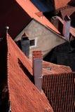 историческая крыша Стоковое Изображение RF