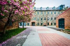 Историческая мельница в держателе Вашингтоне, Балтиморе, Мэриленде Стоковое фото RF