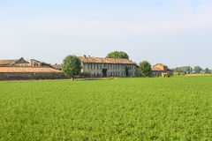 Историческая ферма около Павии стоковое изображение rf