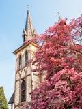 Историческая церковь весной Стоковая Фотография