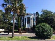 Исторические дома на бульваре Мюррея, Чарлстоне, SC стоковое фото rf