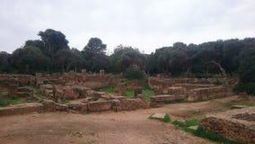 Исторические руины на nord Алжира Стоковые Фото