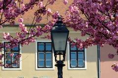 Исторический европейский жилой район весной Стоковая Фотография RF