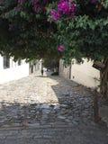 Исторический квартал города del Сакраменто Colonia стоковое изображение