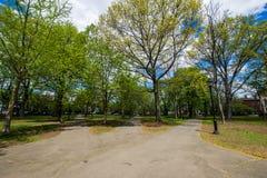 Исторический район улицы суда в квадрате Вустера в New Haven Стоковые Фотографии RF