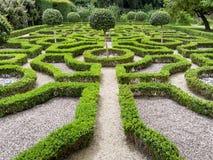 Исторический сад Tudor Стоковые Изображения