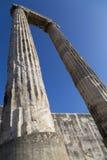 Исторический столбец в виске Apollon от Didyma Турции Стоковое Изображение RF