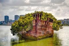 Историческое кораблекрушение SS Ayrfield в Сиднее Стоковые Фотографии RF