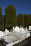 Историческое кладбище арен Punta, Чили стоковые фото