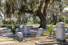 Историческое кладбище Бонавентуры стоковая фотография
