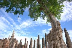 историческое sukhothai парка стоковое изображение