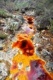 Источник реки Tinto, Андалусии (Испании) Стоковые Изображения RF