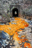 Источник реки Tinto, Andalusia (Испания) Стоковое Изображение