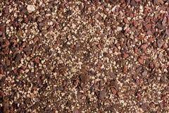 Истощенная почва Стоковые Изображения