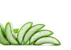листья алоэ свежие изолированные над белизной vera Стоковые Фотографии RF
