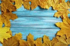 листья листьев предпосылки осени цветастые сухие Стоковое Изображение