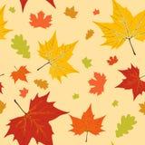 листья осени делают по образцу безшовное Стоковые Изображения