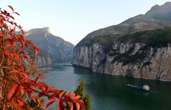 03 листь Соединенные Штаты живописный Three Gorges Стоковые Изображения RF