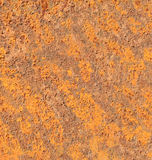 лист металла утюга корозии предпосылки ржавый Стоковая Фотография
