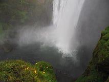 Исландский водопад Skogafoss с брызгом воды и желтым dandel стоковые изображения rf