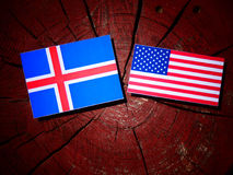 Исландский флаг с флагом США на пне дерева Стоковая Фотография RF