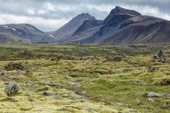 Исландское landschap в летнем времени Стоковые Изображения