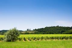 итальянка сельской местности Стоковые Фотографии RF