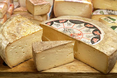 итальянка сыра типичная Стоковое Фото