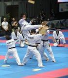 итальянка taekwondo genoa чемпионатов стоковое изображение rf