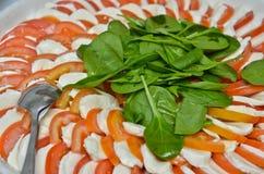 Итальянская плита caprese Стоковое фото RF