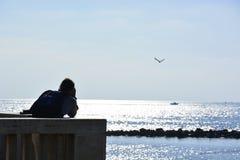 итальянские чайки над морем стоковые фото