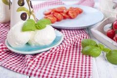 Итальянский салат с caprese Салат свежих овощей и сыра стоковое фото
