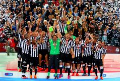 Итальянский финал кубка 2015 Стоковая Фотография RF