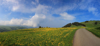Италия, альт Адидже Trentino, Siusi allo Sciliar Стоковые Изображения